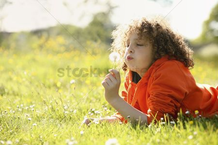 Curly hair : Boy blowing dandelion