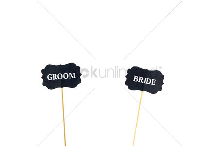Accessories : Bride and groom photo booth stick props