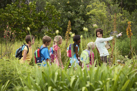 Knowledge : Children on nature field trip