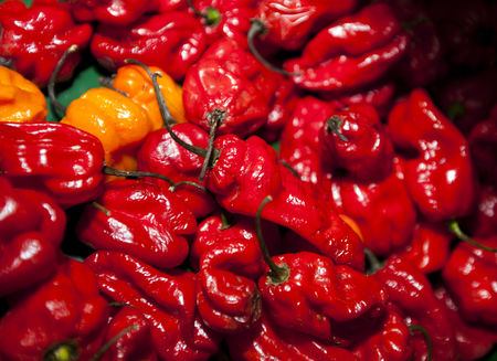 Supermarket : Close-up of red chillies in grocery store