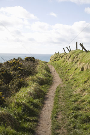 Grass : Coastal path