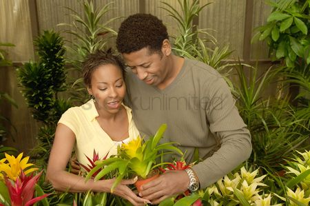 Greenhouse : Couple selecting plants at nursery