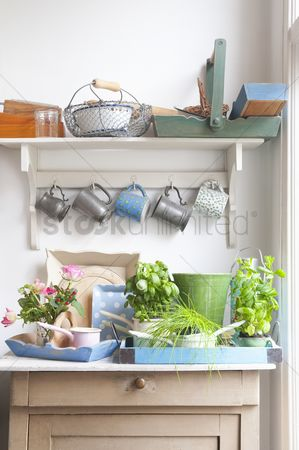 Interior : Cups and trays on kitchen dresser