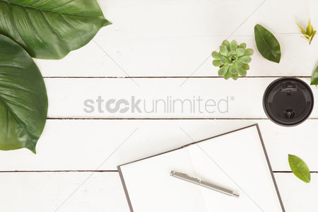 Flat : Flatlay of white background with plants and leaves