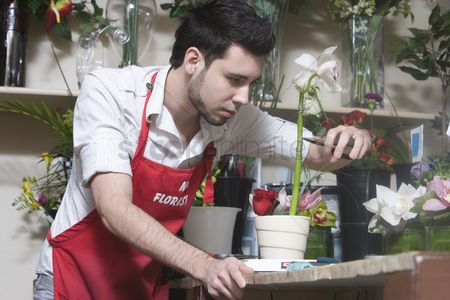 Apron : Florist concentrates while cutting stem