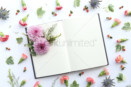 Blank : Flowers with open blank book design