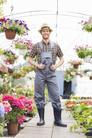 Greenhouse : Full-length portrait of happy gardener standing at greenhouse