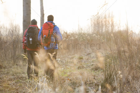 Jacket : Full length rear view male hikers walking in field