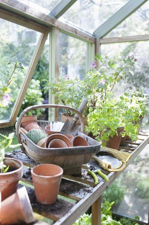England : Gardening equipment on workbench in potting shed