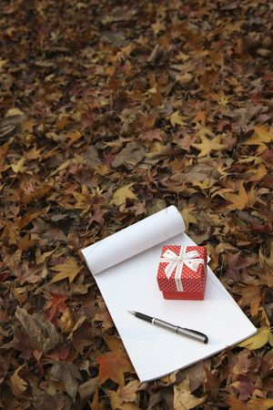 Notepad : Gift box with notepad and pen