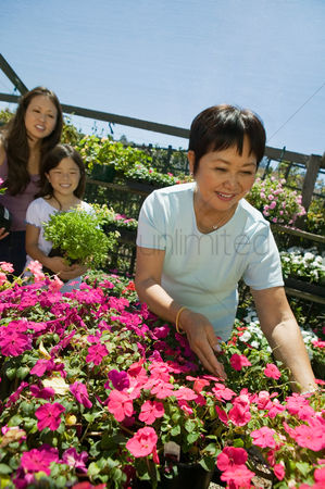 Choosing : Grandmother selecting flowers in plant nursery with daughter and granddaughter