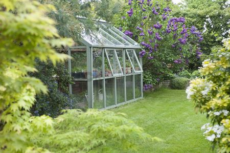 Grass : Greenhouse in back garden with open windows for ventilation