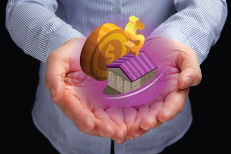 Dollar sign : Hands presenting financial property concept
