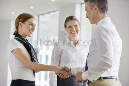 Businesswomen : Happy business partners shaking hands in office