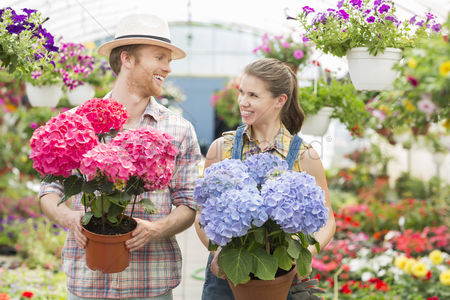 Garden : Happy gardeners looking at each other while holding flower pots at greenhouse