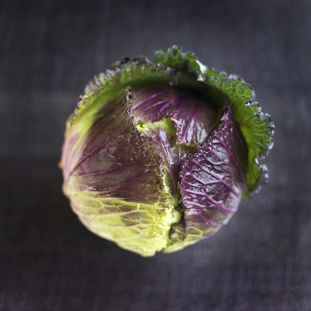 Appetite : High angle close up of a cabbage