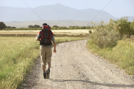 Physical : Hiker walking on country road back view