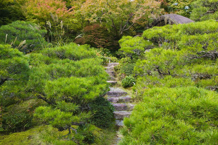 Grass : Kyoto japan okochi denjiro stone steps in garden
