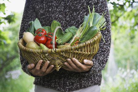 Mid adult man : Man holding fruit and vegetable basket mid section close-up