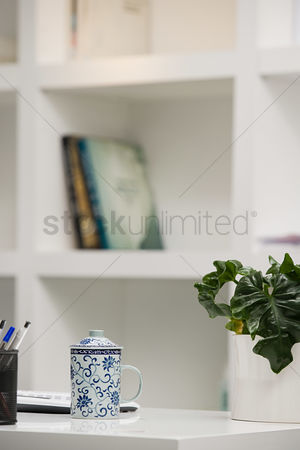 Houseplant : Office