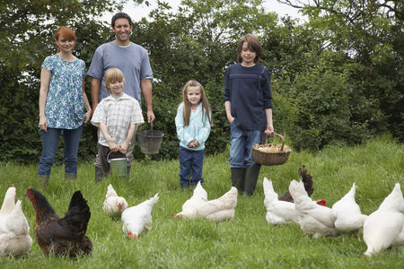 Large group of animals : Parents with three children  5-9  feeding hens in garden portrait