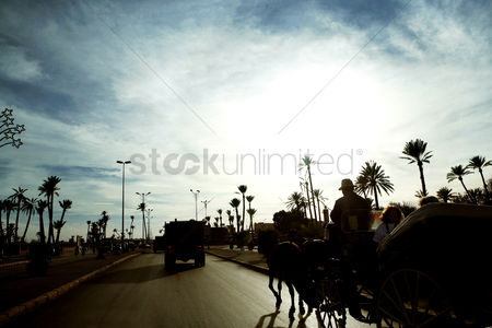 On the road : People riding in horse-drawn carriage