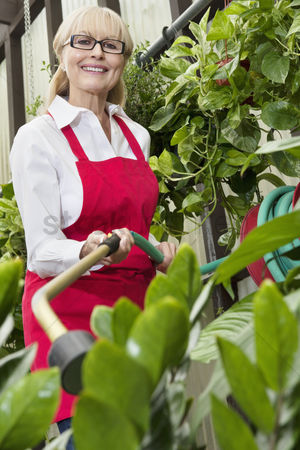 Greenhouse : Portrait of a senior female gardener spraying pesticide on plants in botanical garden