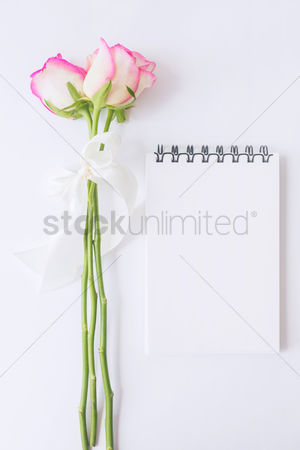 Notepad : Roses with a notepad