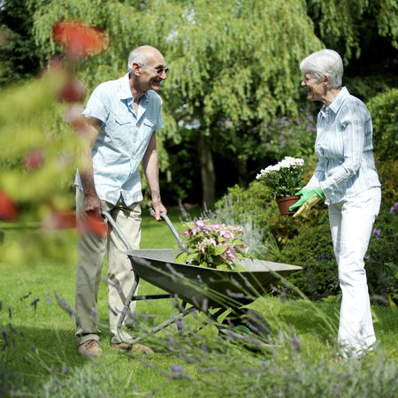 Aging process : Senior couple working in the garden
