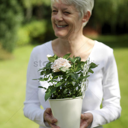 Adulthood : Senior lady holding a pot of rose