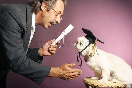 Lover : Senior man presenting a scroll to his dog