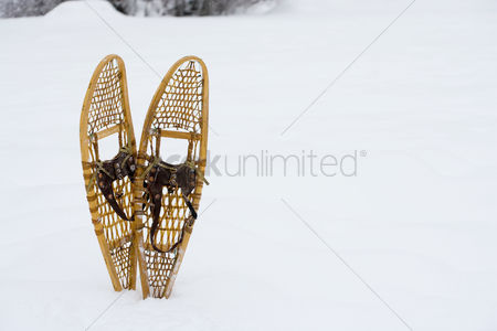 Employment issue : Snow shoes