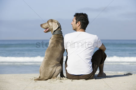 Friend : South africa cape town man and dog sitting beach