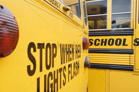 Careful : Stop when red lights flash on school bus