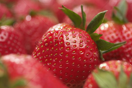 Fruit : Strawberries close-up