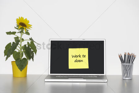 Advice : Sunflower plant on desk and sticky notepaper with dutch text on laptop screen saying  werk te doen   work to do