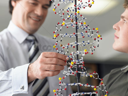 40 44 years : Teacher looking at student s dna model close up