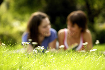 Girlfriend : Teenage girls lying forward on the field reading book