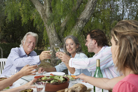 Toasting : Two couples toasting at garden table