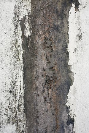 Weathered : Weathered wall
