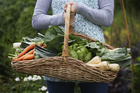 Leaf : Woman holding vegetable basket mid section close-up