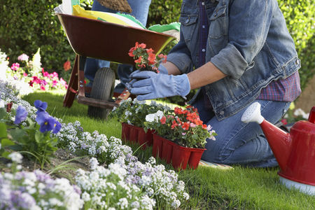 Denim : Woman planting flowers in garden low section