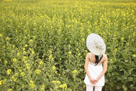 Beautiful : Woman with hat enjoying the view of rape field