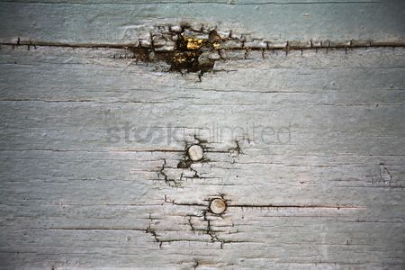 No people : Wood  close-up