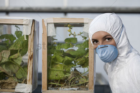 Greenhouse : Worker in protective mask and suit by plants portrait