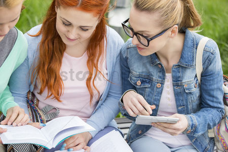 University : Young women studying together in park